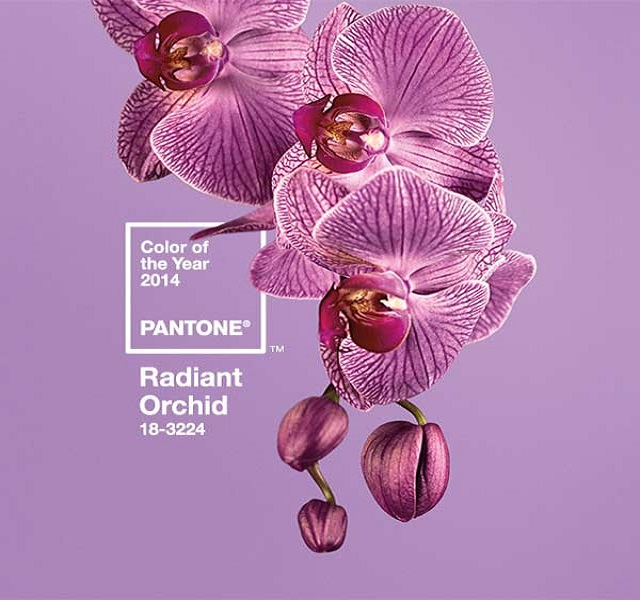 Spring-2014-Radiant-Orchid-for -Interiors15  Spring 2014 - Radiant Orchid for Interiors Spring 2014 Radiant Orchid for Interiors15