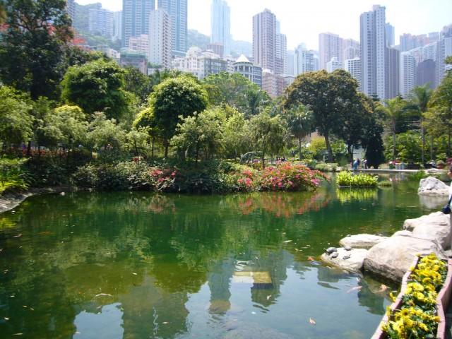 Victoria-Peak-Garden-hong-kong  Hong Kong's Best Parks Victoria Park