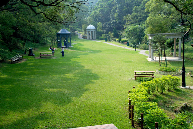 Victoria-Peak-Garden-hong-kong  Hong Kong's Best Parks Victoria Peak Garden